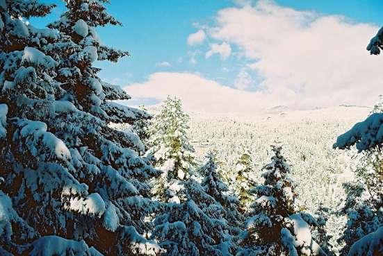 Гостиница для продажи-Abastumani Зимние горнолыжные курорт Фото 1