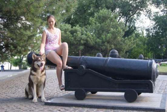 Услуги хендлинга в Ростове/Таганроге Фото 1