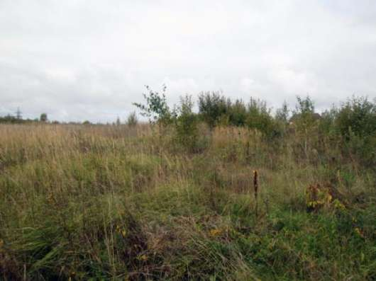 Земельный участок 25 соток в пос. Уваровка, Можайский район 130 км от МКАД по Минскому шоссе.