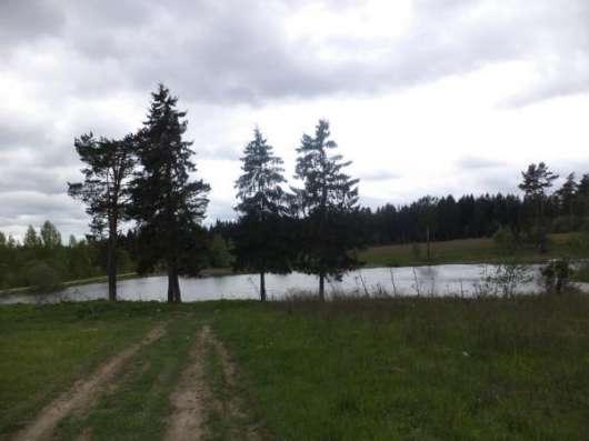 Участок 30 соток в д. Шохово, Можайский р-н 131 км от МКАД по Минскому, Можайскому шоссе.