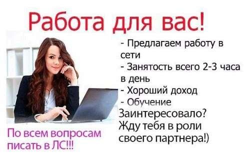 Директор интернет магазина