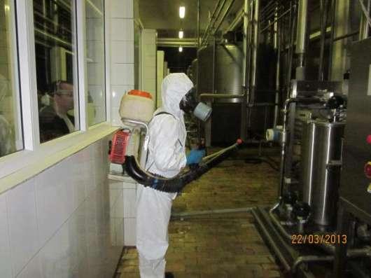 Санобработка от насекомых, грызунов, дезинфекция в Тольятти Фото 3