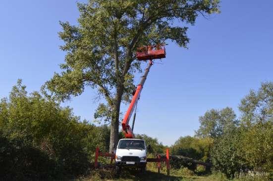 Спил кронирование деревьев