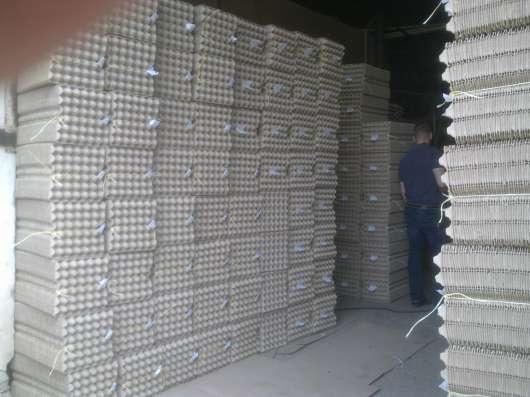 Инвестиции в производство, очень выгодно в г. Миргород Фото 5