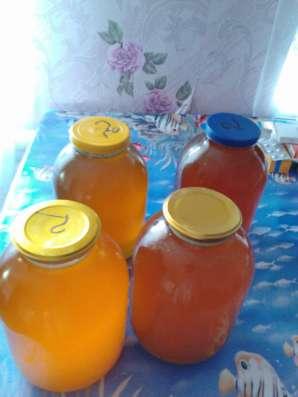 Продаю мед недорого