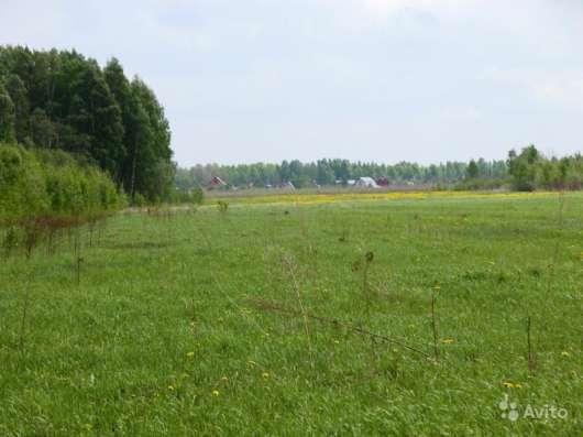 Продаю земельный участок в Подмосковье