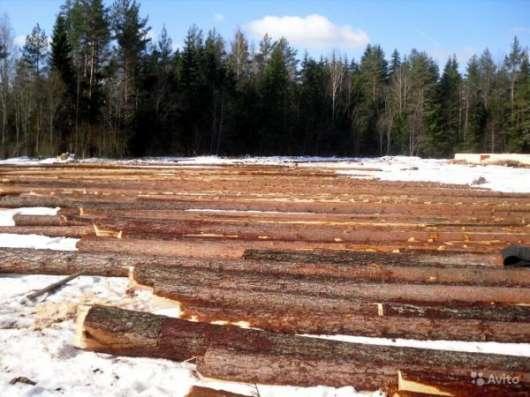 Кругляк лес сосна. Загрузка и доставка