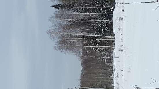 Земельный участок Красный Адуй (ориентир Балтым)