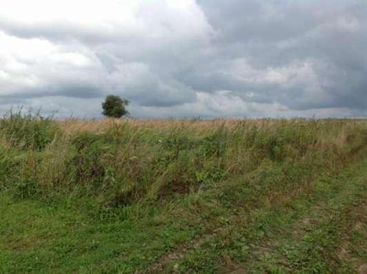 Продается земельный участок 12 соток в д. Шваново, Можайский р-н, 140 км от МКАД по Минскому или Можайскому шоссе.
