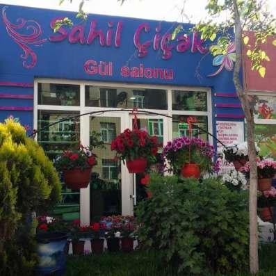 Reklam xidmətləri в г. Баку Фото 2