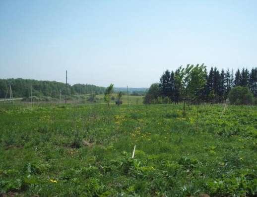 Продается земельный участок 18 соток в Сокольниково, Можайский район, 123 км от МКАД по Минскому шоссе.