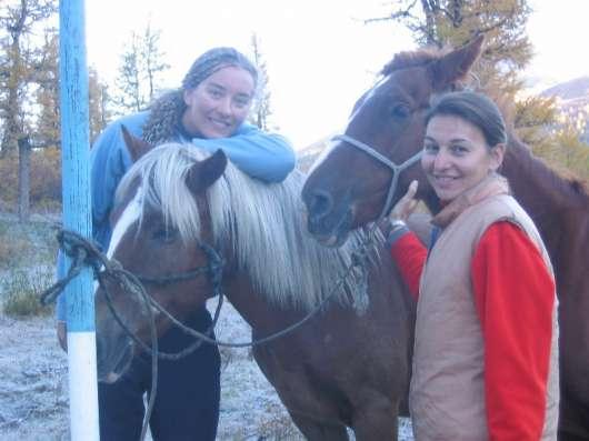 На лошадях к подножию Белухи в Москве Фото 1