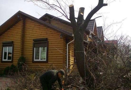 Акуратное спиливание деревьев